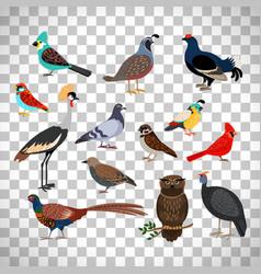 cute birds set on transparent background vector image vector image