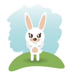 cute rabbit animal wildlife vector image