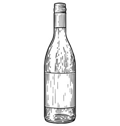 wine bottle drawing engraving ink vector image vector image