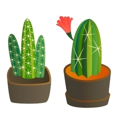 Cute cartoon cactus plant vector image