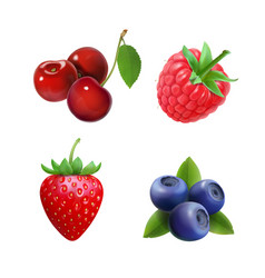 berries strawberry raspberry blueberries cherry vector image