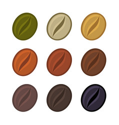coffee beans various stages of roasting set vector image