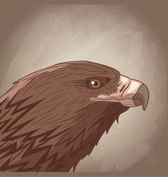 eagle drawing over brown background vector image