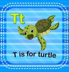 Flashcard letter t is for turtle vector