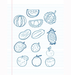 Freehand drawing fruit on a sheet vector image
