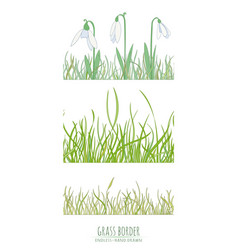 Grass natural border vector