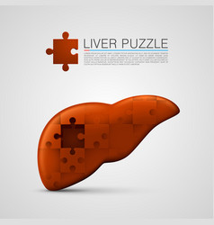 Liver puzzle sign medical vector