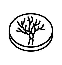 Penicillium mold fungi line icon vector