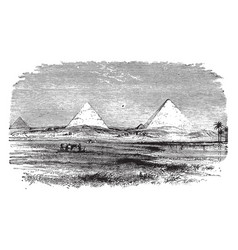 Pyramids egyptian landscape vintage engraving vector