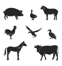 Silhouettes of livestock vector