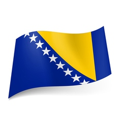 State flag of Bosnia and Herzegovina vector image vector image