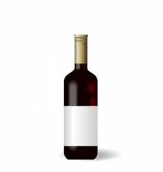 wine bottle with label vector image