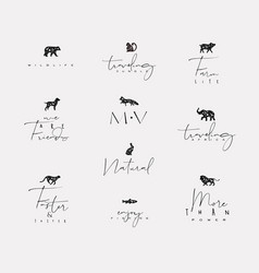 animals mini floral graphic signs vector image