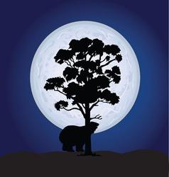 Bear on a moonlight color vector
