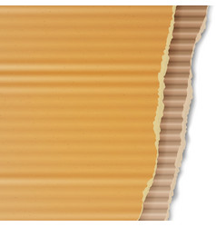 Corrugated cardboard background realistic vector