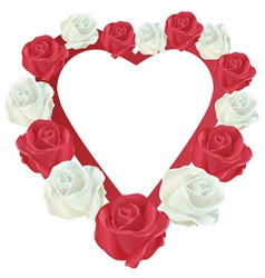 Heart with white and red roses vector