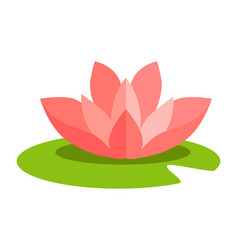 lotus flower isolated in flat design on white vector image