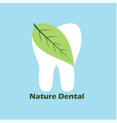 nature dental vector image