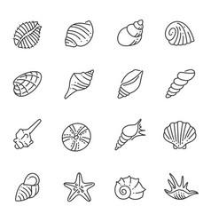 set monochrome contour sea shells line icon vector image