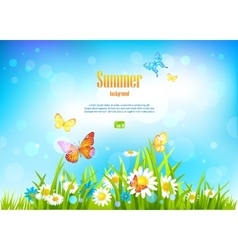 Sunny day background with flowers vector