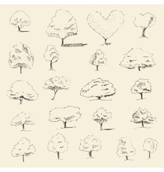 Trees sketch set vintage style hand drawn vector image