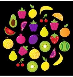 fresh tasty fruit circle isolated on black vector image vector image