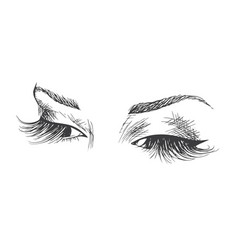 Beautiful eyes with long eyelashes vector
