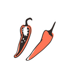 Doodle chili pepper hand drawn stylish fruit and vector