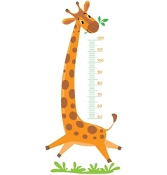 Giraffe meter wall vector image