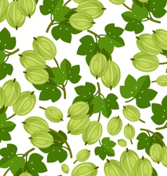 Gooseberry pattern vector image