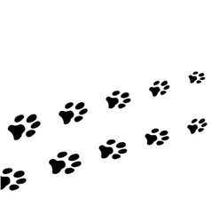 paw print dog vector image