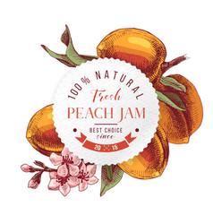 peach jam paper emblem over hand drawn peach vector image