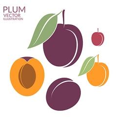 Plum Set vector