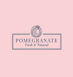 Pomegranate abstract sign symbol or logo vector