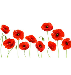 red poppy background 3d realistic vector image