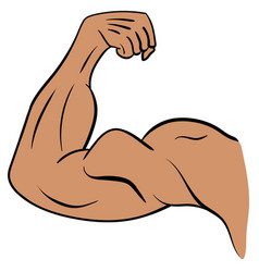 strong male arm symbol of power and muscle vector image