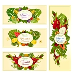 Tropical and exotic fruit banners for food design vector image