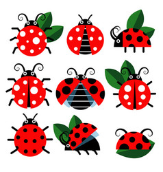 cute ladybug icons cartoon-style bugs and vector image