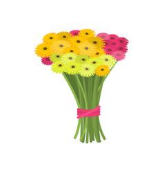 Big wonderful bouquet of pink and yellow gerberas vector