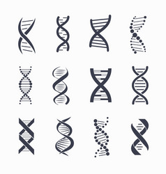 dna different icons set on vector image