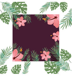 Frame with flower and leaves summer vector