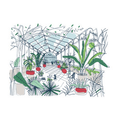 Freehand drawing of interior of botanical garden vector