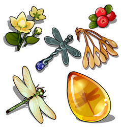 Keychain dragonfly insect amber flower and berry vector