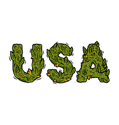 Lettering design weed inscription usa vector