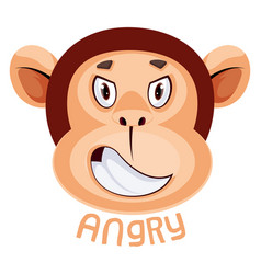 Monkey is feeling angry on white background vector