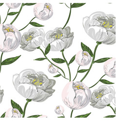 white peony seamless pattern vector image