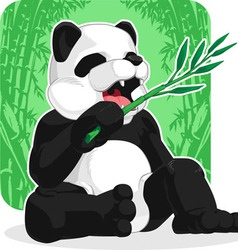 Panda Eating Bamboo Leaves vector image vector image