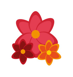 Colorful flowers icon vector