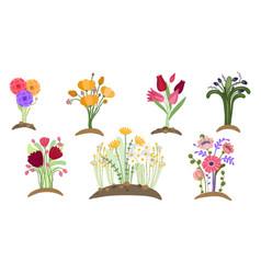 forest flowers garden spring floral planting vector image