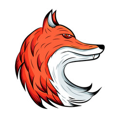 fox emblem animal logo vector image
